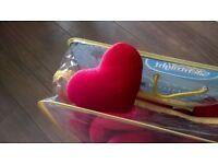 Photography Props - Velvet Hearts