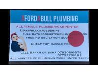 Afordabull female plumber/carpenter