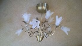Decorative ceiling light