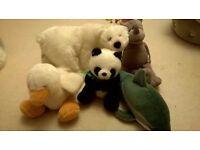 Bundle of Cuddly Toys - Polar Bear, Duck, Dolphin, Rhino and Panda