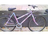 GoGo bike only £25