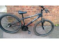 """men's x - rated bike 26"""" wheels"""