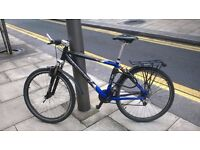 Mountain Bike small frame