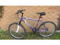 Purple bike almost for free!!!