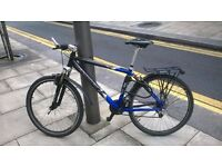 Verdoes Mountain Bike 17.5 inches (Dutch Custom Hand Made)