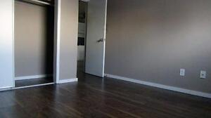 Newly renovated 2BD for just $1085 plus free internet!!! SD $350 Edmonton Edmonton Area image 8