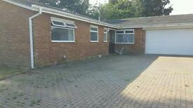 4 bedroom detached bungalow superbly located in Ipswich