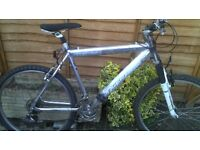 Men's Concept Mountain bike only £35