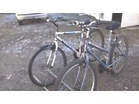 LADIES AND GENTS MOUNTAIN BIKES LADIES 18 IN AND GENTS 20 IN FRAMES 26 IN wheels