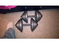 2-20kg dumbells for sale