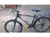 mountain bike LADIES OR GENTS GIANT YUKON 20 IN FRAME suit 5.4 to 6.2 ft tall
