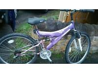 BREEZE CONCEPT adults mountain bike for sale ....