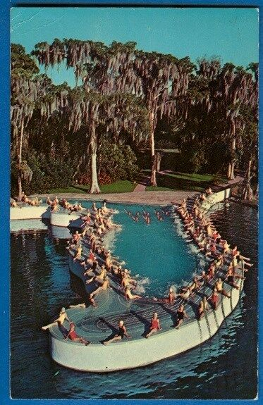 Details about Esther Williams Swimming Pool, Shape Of FL, Lake Eloise,  Cypress Gardens, FL