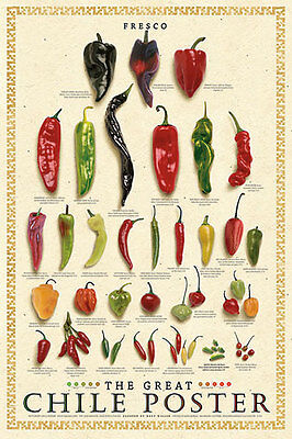 The Great Chile Poster Fresh & Spices and Culinary Herbs Pepper Print Set 24x36