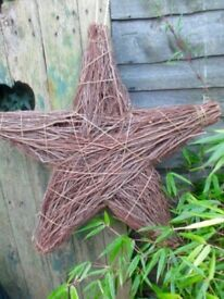 Large Willow Star