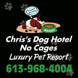 Chris's Dog Hotel No Cages Luxury Pet Resort, Boarding $25.00