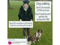 Dog Walking Lowedges, Greenhill and Bradway