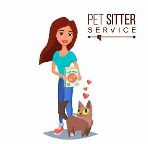 Petsitter Available