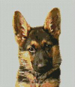 German-Shepherd-Counted-Cross-Stitch-Kit-7-x-8-D2139