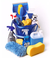 Local cleaning lady only $25/HR