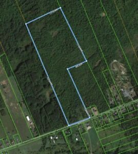 Lot for sale in Limoges (approx. 68.192 acres)