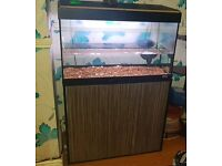 Fluval fishtank with storage cupboard + internal filter