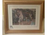 Stephen Gayford framed prints x2