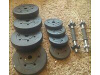 25kg weights