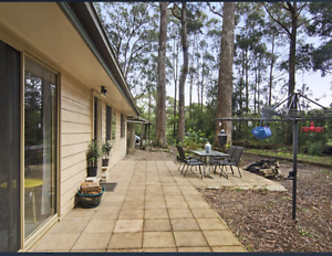 COTTAGE IN THE GOLD COAST HINTERLAND, SPRINGBROOK Springbrook Gold Coast South Preview