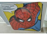 Spiderman canvas