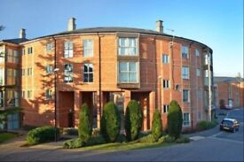 Luxury furnished two bedroom apartment