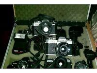Large SLR Camera Collection - Swaps for Digital