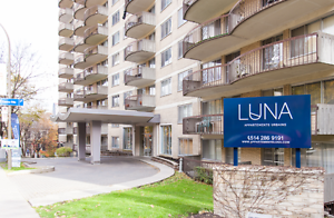 GREAT DEAL, 5 1/2 BEDROOMS, MCGILL, PEEL, DOWNTOWN MAI 1ST