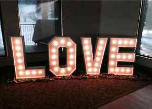 Wood Wedding Decorations L O V E letters with lights.