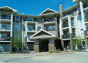 Gorgeous 2 Bedroom / 2 Bathroom Condo - South Terwilleger
