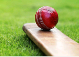 School Year 7&8 Cricket Players Wanted