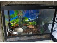 Vivarium plus Heat Mat