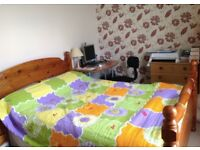 A double room to rent in a family house in Charminster