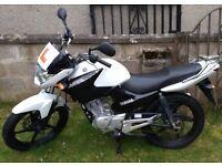 Yamaha YBR 125, 2016, 1600 miles on the clock, very good condition, 125cc