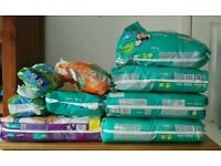 Various Pampers Nappies and more
