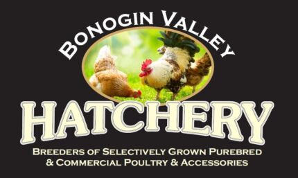 PUREBRED CHICKENS AND BANTAMS FOR SALE