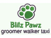 Dog walking , Grooming , Taxi