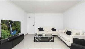 Renovated Unit in Bankstown for rent