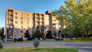 Newly Updated Two Bedroom Condo  - Available September 1