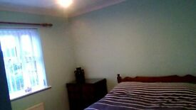 LARGE DOUBLE ROOM FOR RENT IN SHARED HOUSE IN DEREHAM