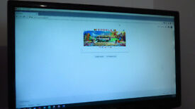 21 inch wide screen Packard Bell monitor