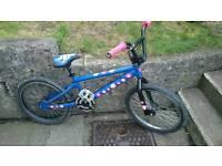 Diamondback 20 inch Bmx Bike