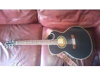 Washburn EA20 Acoustic