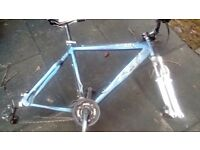Alloy bike no wheels
