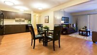 Pet friendly 3BR Apt w/insuite laundry (month to month)